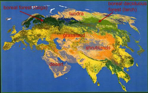 Mapa de Eurasia por biomas